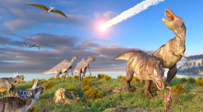 Are Dinosaurs Mentioned in the Bible?